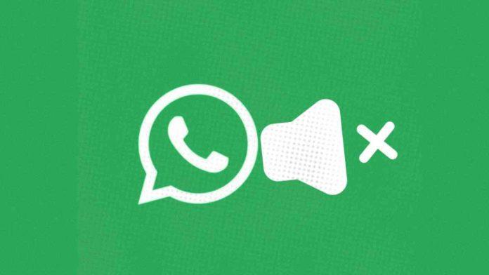 Mute videos before sending on WhatsApp